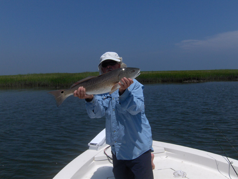 NC Red Drum Fishing